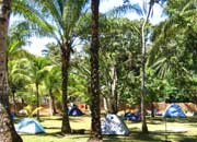Tropical Camping
