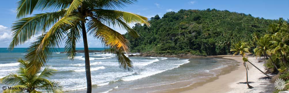 A beleza das praias - 1 6